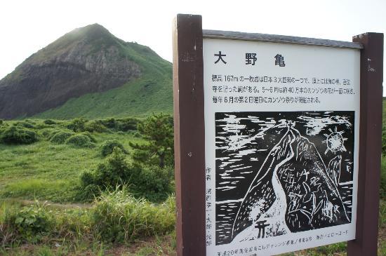 Onogame: 大野亀