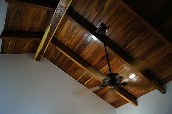 Hotel Playa Cambutal: ventilatore