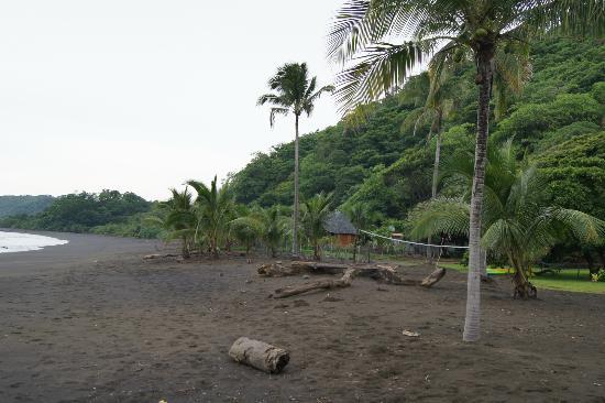 Hotel Playa Cambutal: spiaggia