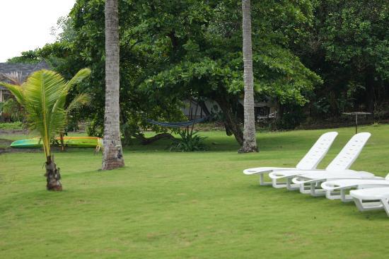 Hotel Playa Cambutal: amache sotto gli alberi
