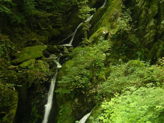 Ambleside Backpackers: Ambleside waterfalls - good to visit 15 mins from hostel