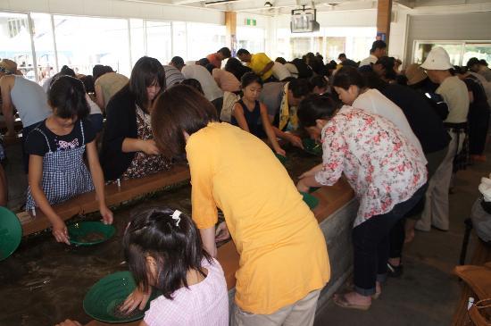 Sado Nishimikawa Gold Park: 砂金取り体験に夢中