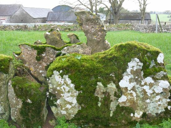 The Old Bank Bed and Breakfast: Part of a stone circle outside Bruff, Ireland.