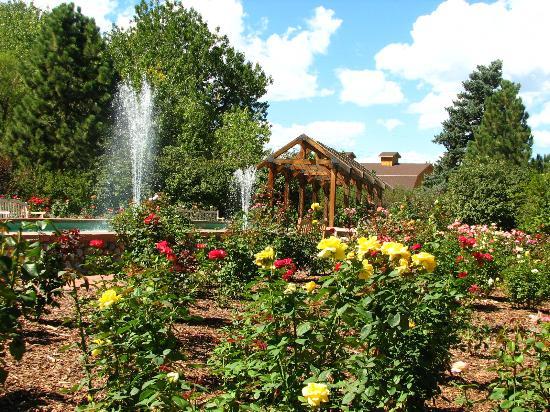 Hudson Gardens: Rose Garden
