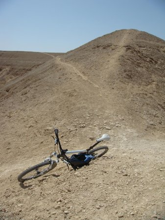 Wadi Degla: Typical Trail