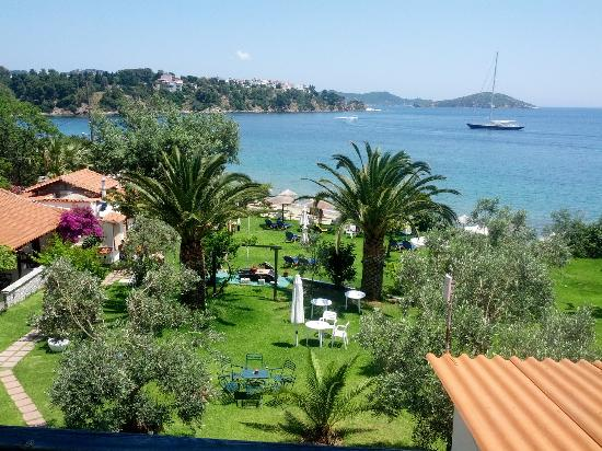 Angeliki Beach Hotel: Hotel garden from the balcony