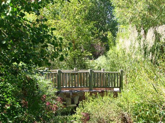 Hudson Gardens: footbridge