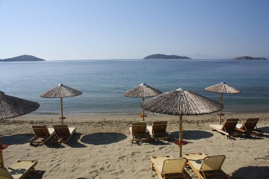 Angeliki Beach Hotel照片