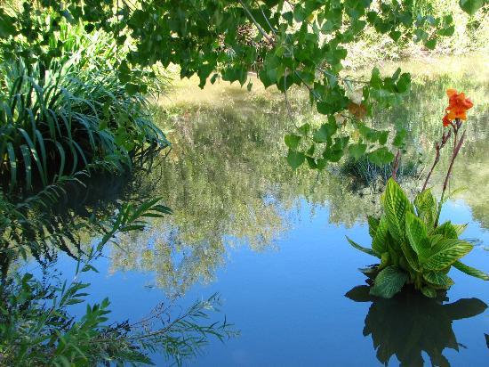 Hudson Gardens: photo12