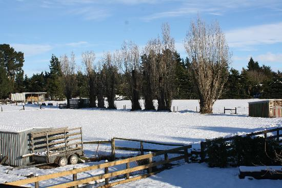 Miners Arms Farmstay Bed & Breakfast: snowfield from the inn