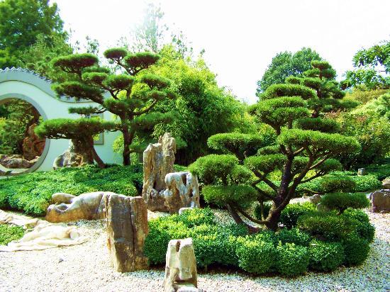 Chinesischer garten bild von arboretum ellerhoop for Chinesicher garten