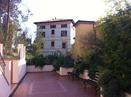 Porto Potenza Picena, Włochy: antico uliveto