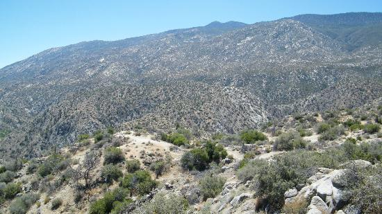 Santa Rosa Mountains / San Jacinto National Monument: Pines to Palms Highway