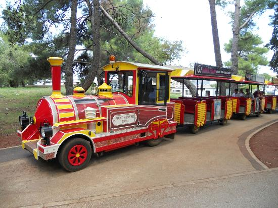 Laguna Molindrio Hotel: Road train