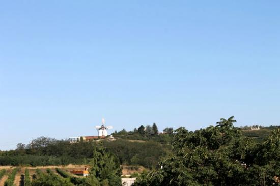 Hotel Althof Retz: View of the Windmill from our room