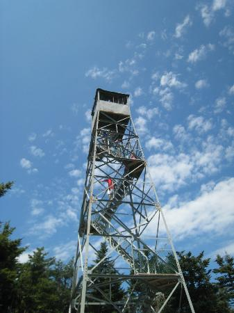 Healdville Trail: the fire tower