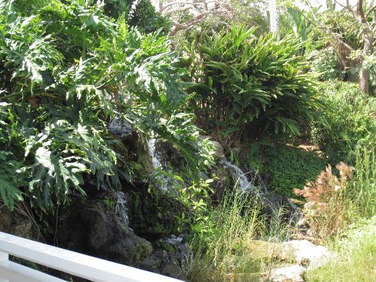 Sanibel Cottages Resort: Waterfall