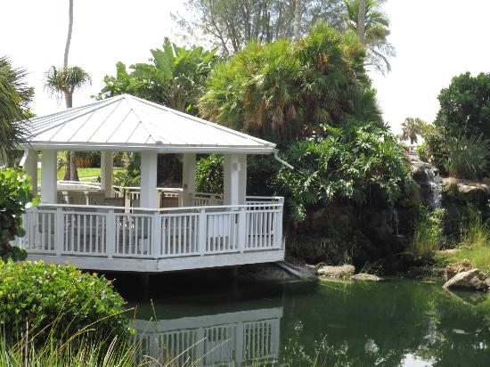 Sanibel Cottages Resort: Gazebo