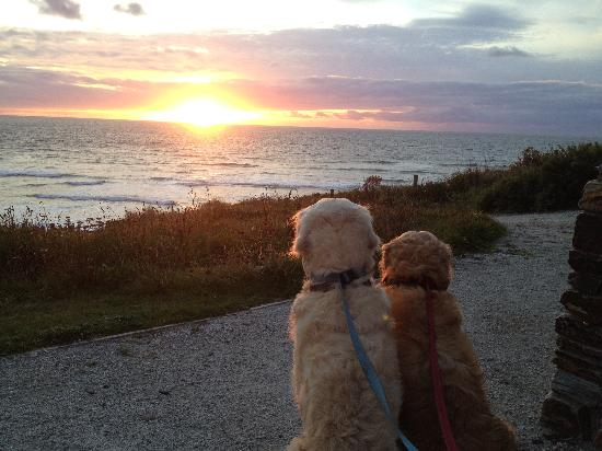 The Scarlet Hotel: Hugo and Hudson watching the sunset at The Scarlet