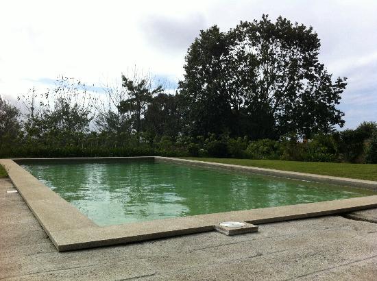 Quinta da Bouca d'Arques: Piscina