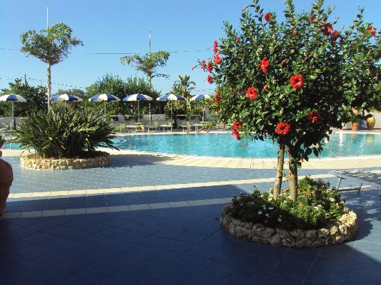 Damanse Hotel: zona piscina