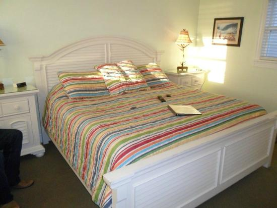 Cape Hatteras Bed and Breakfast: View from the door