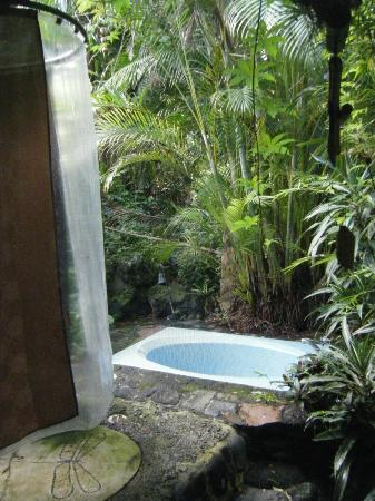 Dragonfly Ranch - Healing Arts Center: Outdoor curtained shower and tub