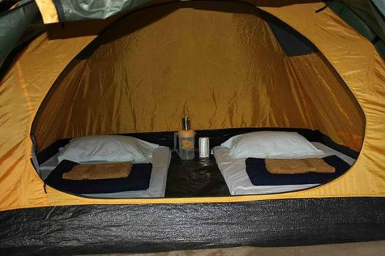 Greenwoods Nature Camp Inside Swiss Camping Tent 6ft By