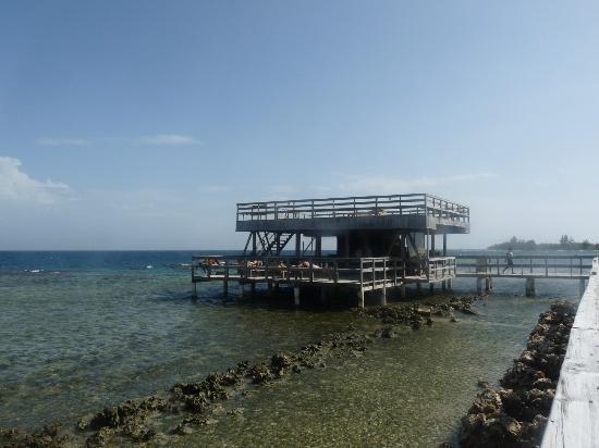 Coral View Beach Resort: The Bar