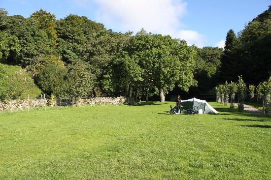 Green Dragon Inn: The lower camping field at the Green Dragon, Hawes