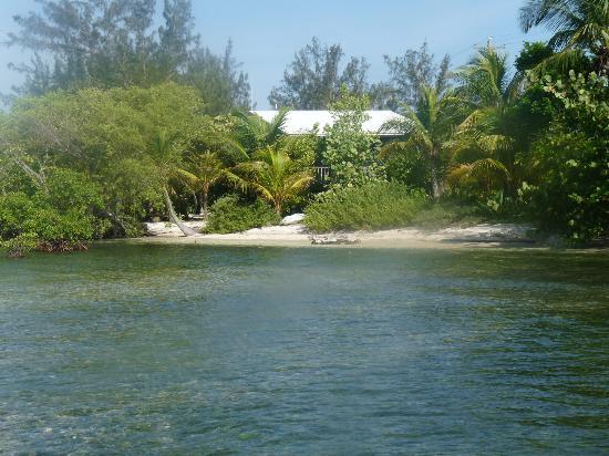 Coral View Beach Resort: beach