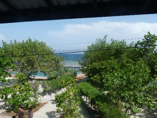Coral View Beach Resort: View from the room