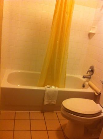 Good Nite Inn Rohnert Park: bathroom