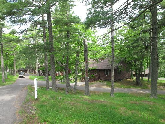 Keweenaw Mountain Lodge: Cabins in the midst of nature