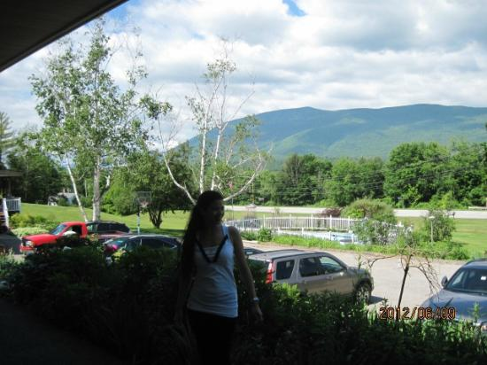 The Stamford Motel & Restaurant: Mt. Equinox from the room, great view and the pool is a nice touch.