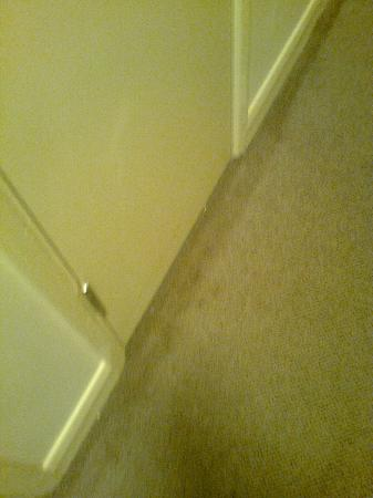The Welcome Inn: dirty carpet