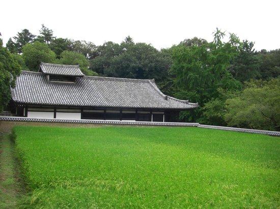 Todai-ji Temple: 二月堂付近