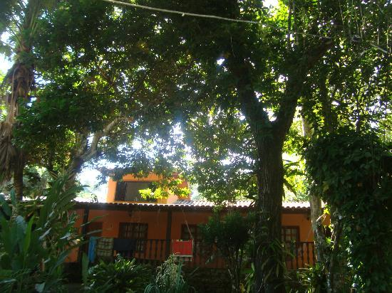 Holandes Hostel: Puro verde
