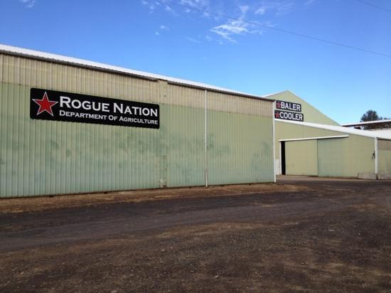 Rogue Farms Micro Hopyard: Rogue's hop production facilities