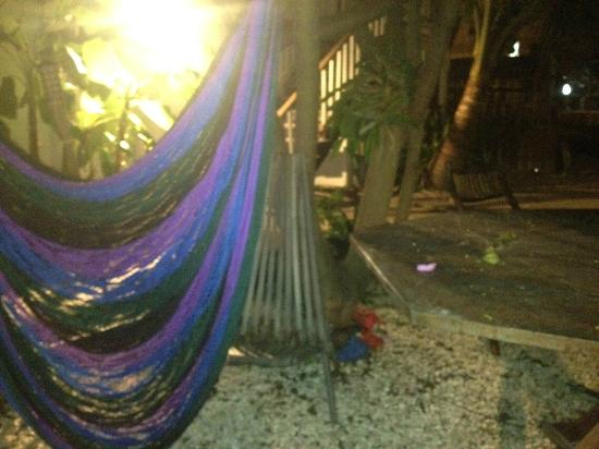 Pedro's Hotel: Relax on the hammocks