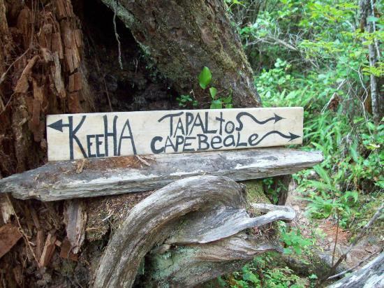Bamfield, Kanada: trail to Keeha Beach