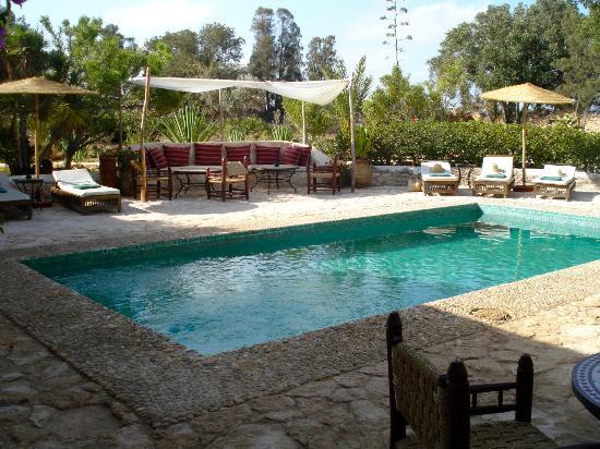 La piscine photo de les jardins de villa maroc for Les jardins de villa maroc essaouira