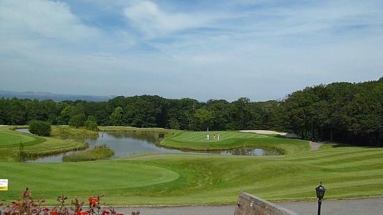Woodbury Park Hotel & Golf Club: The 18th