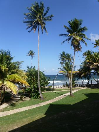 Magdalena Grand Beach & Golf Resort: Hotel Grounds