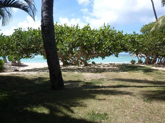 Rosewood Little Dix Bay: vue de notre cottage océan