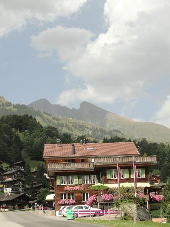 Alpenblick Hotel Pub & Restaurant: Das Hotel