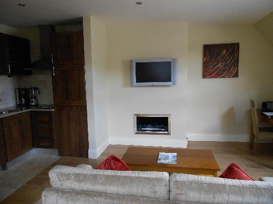 PREMIER SUITES PLUS Dublin Leeson Street: Living Room I