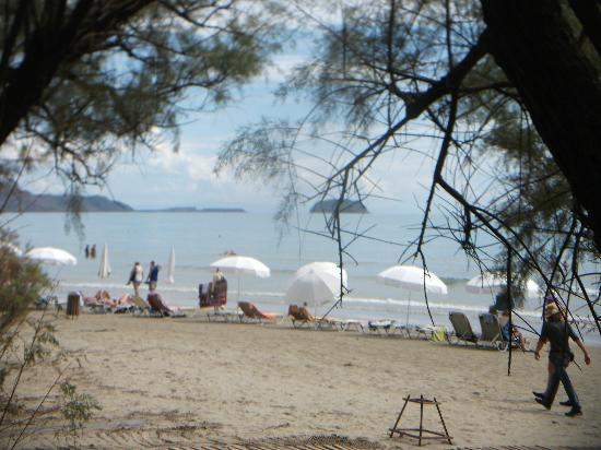 Louis Zante Beach: View of beach from hotel beach bar