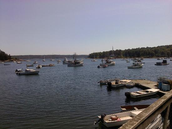 Muscongus Bay Lobster: This is your view from the picnic tables!