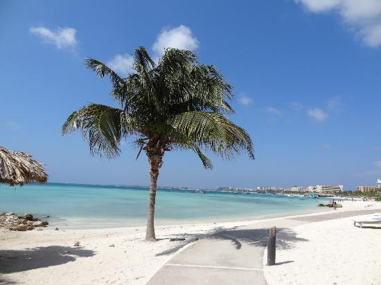 North side of island inuksuks picture of divi aruba - Divi beach aruba ...